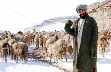 Hirte mit Schafen im Dorf Baluc