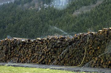 Holzlager aus Waldschaeden durch Windbruch
