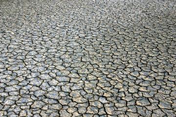 Ausgetrocknetes Sumpfgebiet Camargue