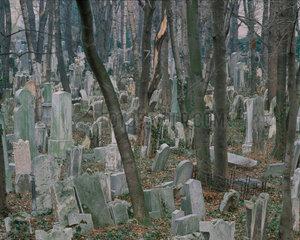 Friedhof in Wien Judenfriedhof