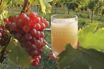 Weintraube und Sturm
