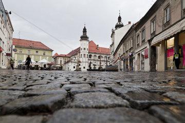 Stadtburg in Maribor  Slowenien  Europa