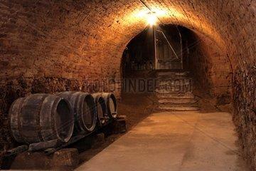 Alter Weinkeller im Weinviertel NOe