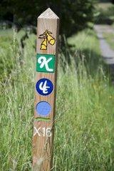Wegweiser im Nationalpark Kellerwald  Voehl Herzhausen  Landkreis Waldeck Frankenberg  Hessen  Deutschland Europa