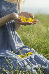 Young woman kneeling in meadow  holding flower petals in hands  cropped