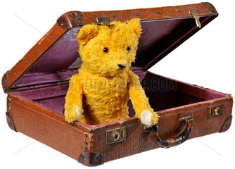 alter Teddybaer im Koffer  1959