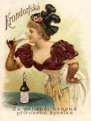 Werbung fuer Mineralwasser  1898