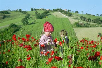 Kinder im Mohnfeld  Italien