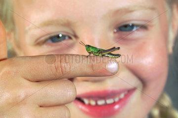 Kind beobachtet Grashuepfer  Heuschrecke