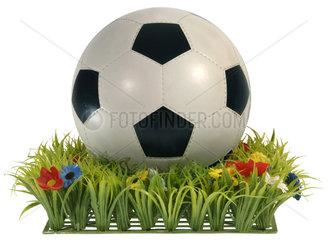 alter Fussball von 1970  Rasen