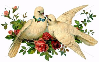 Turteltauben als Symbol fuer Liebe  Hochzeit  1904
