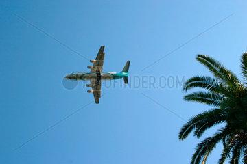 Neapel. Flugzeug ueber dem Park von Capodimonte
