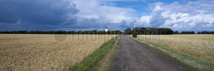 Weg bei Westermarkelsdorf  Insel Fehmarn  Ostsee  Kreis Ostholstein  Schleswig-Holstein  Deutschland  Europa