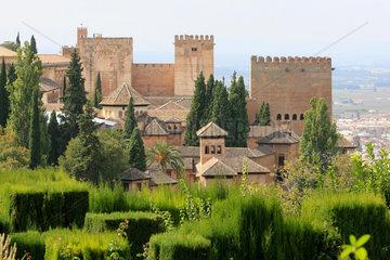 Alhambra  Die Alcazaba