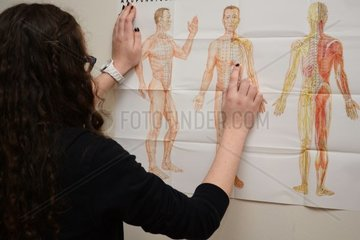 Krankenschwester erklaert Akupunktschaubild