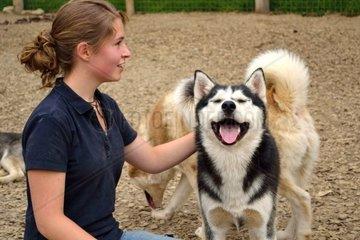 Jugendliche streichelt Husky