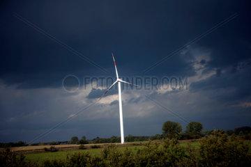 Wind turbines generate electricity