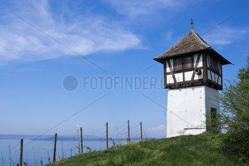 Winzerturm oberhalb der Haltnau am Bodensee  Meersburg  Baden-Wuerttemberg  Deutschland  Europa