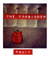The forbidden fruit  Erdbeere