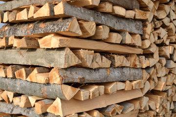 Brennholz fuer Wintervorrat gestapelt