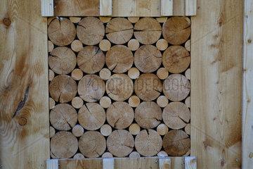 Sichtschutz und Holzzaun