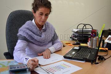 Budgetkontrolle anhand eines Diagrammes im Firmenbuero
