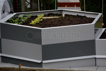 sechseckiges Metall-Hochbeet frisch bepflanzt