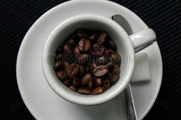 Kaffee ohne Wasser