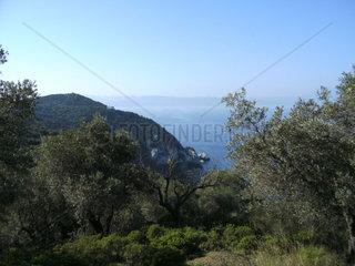 Greek landscape island Skiathos North Sporades