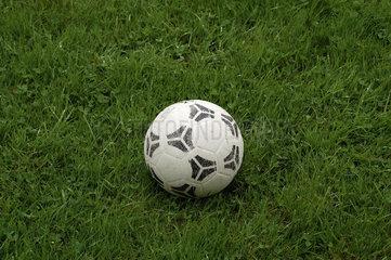 Fussball im Rasen.