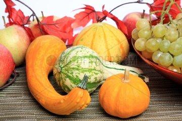 bunte Herbstdeko mit Kuerbissen und Trauben