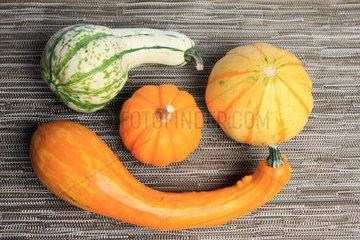 bunte Herbstdeko mit Kuerbissen