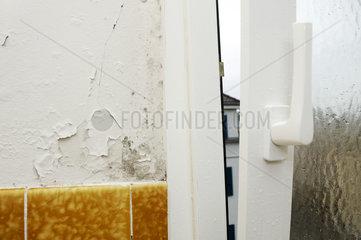 Schimmel und abgeblaetterter Verputz in einem Altbau-Bad mit neuen Fenstern.