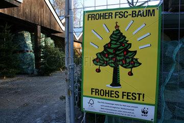 FSC Weihnachtsbaum zu verkaufen in einer Foersterei.