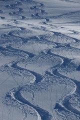 Skifahren abseits der Piste - gefaehrlich und (zer)-stoert Fauna und Flora.