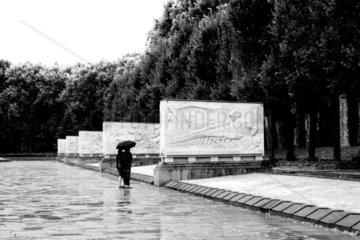 Im Regen am Denkmal