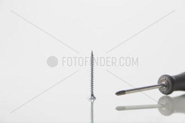 einzelne Schraube mit einem Schraubenzieher vor weiss mit Spiegelung