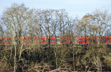 Zug hinter Baeumen