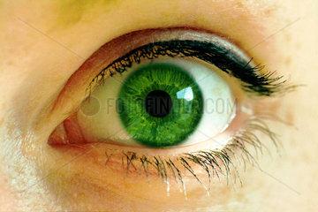 Auge  Durchblick  gruen