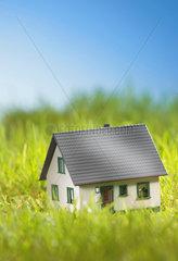 Einzelner Gegenstand; Grasland; Gras; Haus; keine Person; niemand; Modell; Spielsachen; Spielzeug; Unterkunft; Wiese; Haus; Immobilie; Rasen; Zuhause; Konzept; Finanz; Finanzen; Bauen; Sparen; Altersvorsorge; Investieren; Investition; Hypothek; Zukunft; P