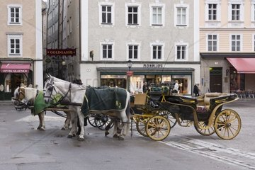 Fiacre  horse-drawn carriage on the Residenzplatz square  Salzburg  UNESCO World Heritage Site  Salzburger Land  Austria  Europe