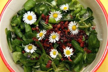 Vogerlsalat mit Gaensebluemchen und Speck