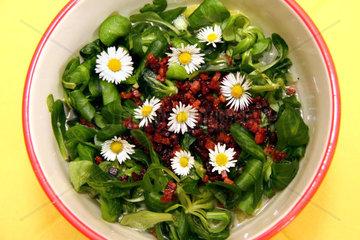 Feldsalat mit Gaensebluemchen und Speck