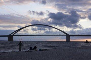 Fehmarnsundbruecke im Abendlicht  Insel Fehmarn  Ostsee  Kreis Ostholstein  Schleswig-Holstein  Deutschland  Europa