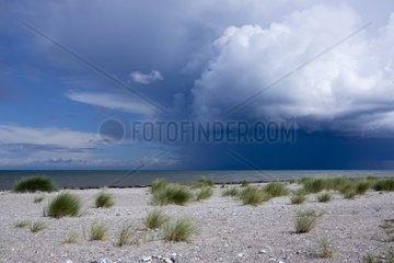 Aufkommendes Unwetter im Naturschutzgebiet Gruener Brink  Insel Fehmarn  Ostsee  Kreis Ostholstein  Schleswig-Holstein  Deutschland  Europa