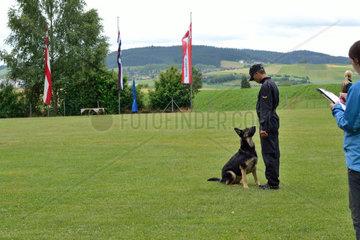 Hundetrainer belegt Pruefung mit Deutschem Schaeferhund