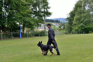 Hundetrainer lernt Deutschem Schaeferhund Kommando Fuss