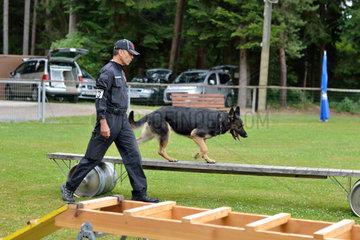 Hundetrainer beim Rettungshundetraining ueber bewegliche Fassbruecke