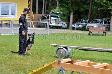 Hundetrainer kommandiert Schaeferhund ueber bewegliche Bruecke