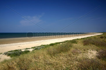 Strand  Atlantikkueste  Noirmoutier-en-l ssle  ssle de Noirmoutier  Pays de la Loire  Frankreich  Europa